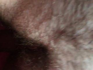 Ebenholz Weiß Schwanz Mollig Weiß Bolzen