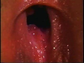 Teenage Bra Busters Big Tit Superstars der 70er Jahre (1976)